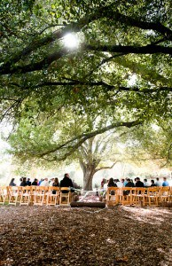 Affordable San Diego Wedding Venues Dos Picos Park