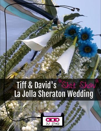 La Jolla Sheraton Wedding 5